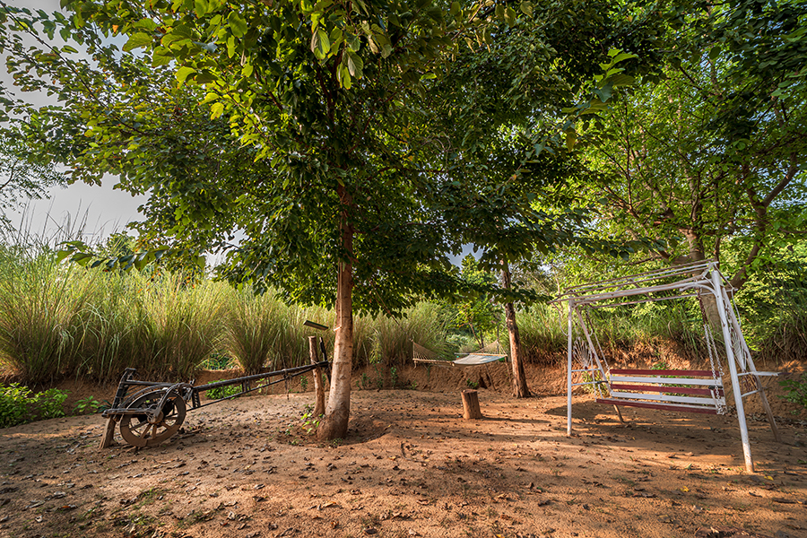 swiss tent in Ranthambore
